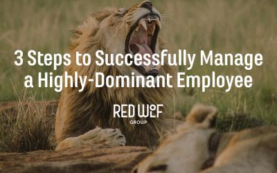 3 Steps to Successfully Manage a Highly-Dominant Employee